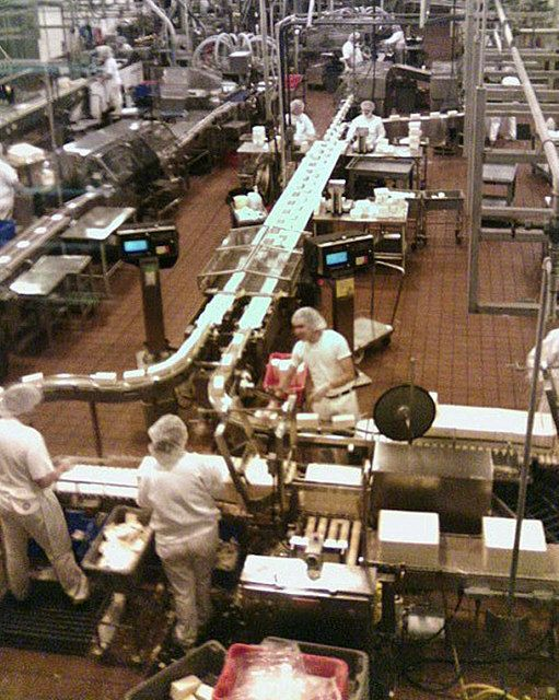Food Safety Course Gives You A Promising Career In The